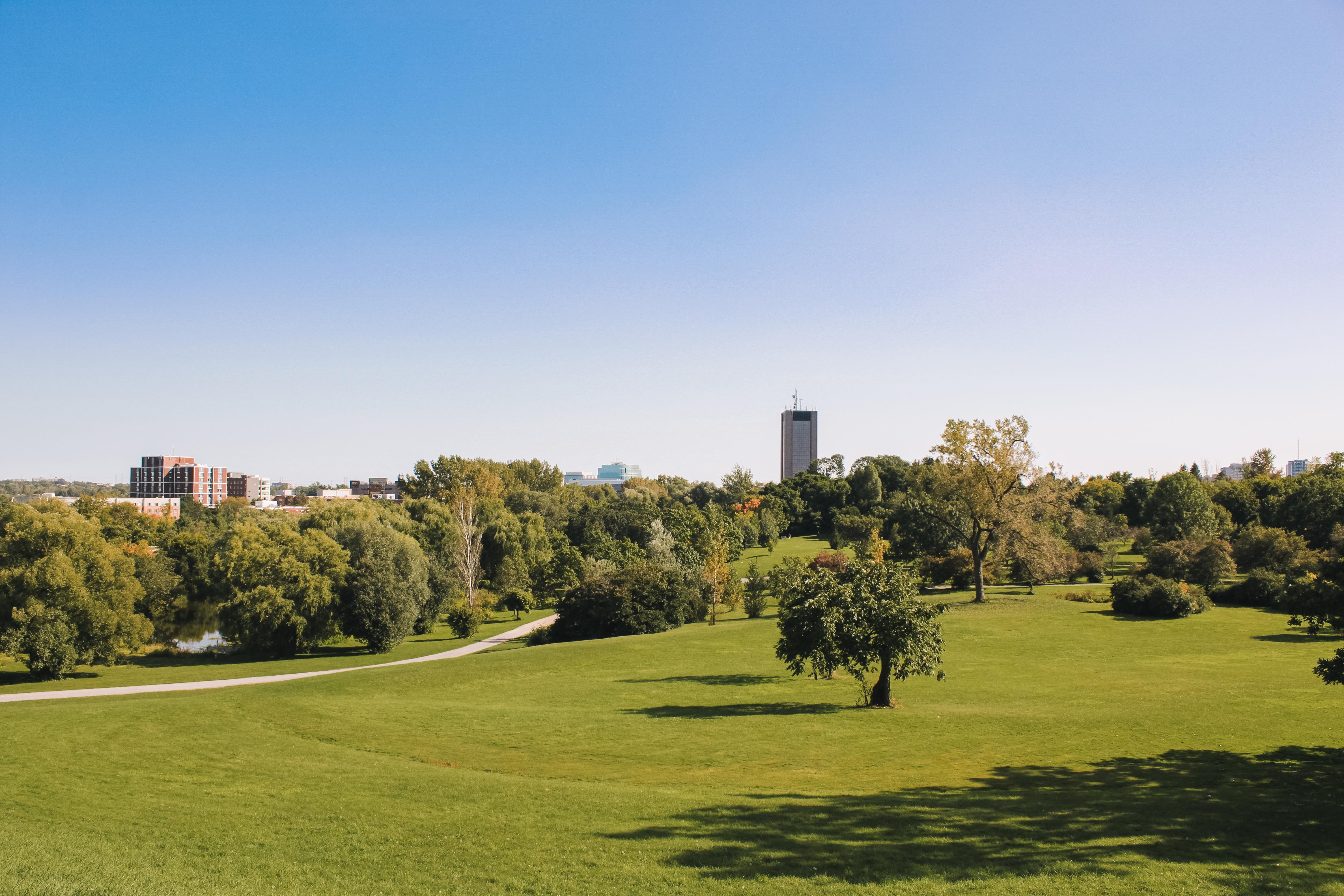 Civic, Arboretum