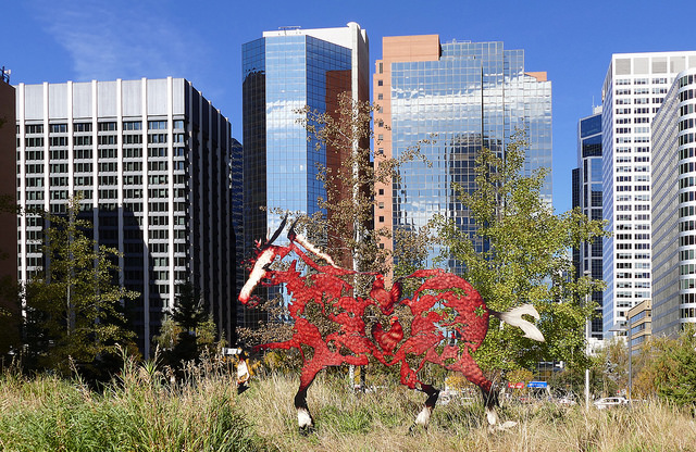Calgary Downtown Apartment Rental Rentals Horse Business