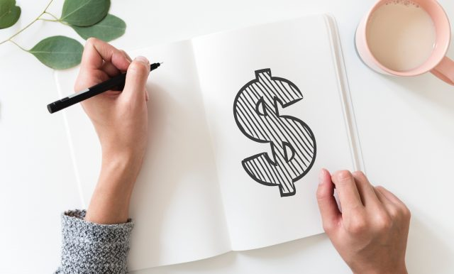 Budget Dollar Sign Plant Hand Flatlay